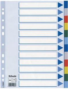 Skirtukai Esselte A4 plastikiniai 12 spalvų - 1