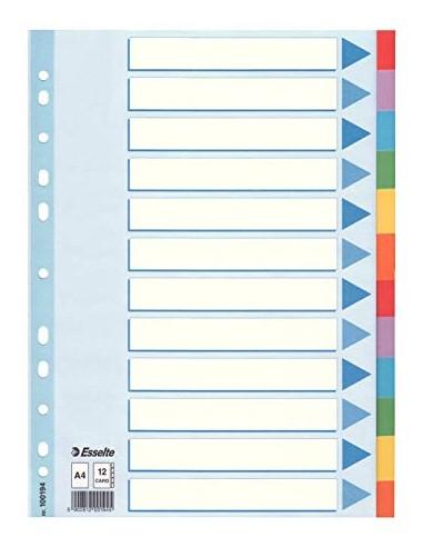 Skirtukai Esselte A4 kartoniniai spalvoti - 1
